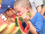 Bloomfield Picnic in the Park: July 7