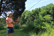 """<div class=""""source"""">KACIE GOODE/The Kentucky Standard</div><div class=""""image-desc"""">A child tries to catch a bite Sunday at Mac's Lake. Bernheim Forest opened the lake Saturday and Sunday for Family Fishing Days, seeing about 2,529 visitors.</div><div class=""""buy-pic""""><a href=""""/photo_select/86613"""">Buy this photo</a></div>"""