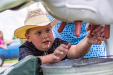 "<div class=""source"">KACIE GOODE/The Kentucky Standard</div><div class=""image-desc"">A child tries milking Kentucky Kate, a life-sized fiberglass cow, at Nelson County Ag Day Saturday afternoon.</div><div class=""buy-pic""><a href=""/photo_select/87408"">Buy this photo</a></div>"