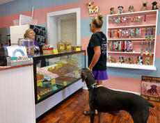 "<div class=""source"">KACIE GOODE/The Kentucky Standard</div><div class=""image-desc"">Katie Byrd looks to get a new collar for her dog, Bella, while stopping by Just Barked Friday afternoon. The dog treat bakery and boutique held its grand opening this weekend and is owned by Chelsea Ryan, owner of Just Baked Bakery on Chambers Boulevard.</div><div class=""buy-pic""><a href=""/photo_select/88745"">Buy this photo</a></div>"