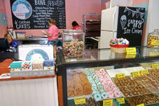 "<div class=""source"">KACIE GOODE/The Kentucky Standard</div><div class=""image-desc"">Just Barked, a spin off of the Just Baked Bakery, opened Friday morning. The shop is a dog bakery and boutique, specializing in homemade dog treats.</div><div class=""buy-pic""><a href=""/photo_select/88747"">Buy this photo</a></div>"