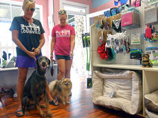 "<div class=""source"">KACIE GOODE/The Kentucky Standard</div><div class=""image-desc"">Katie Byrd and Cynthia Brown stop by Just Barked Friday with their dogs Bella and Turbo. The all-dog spin off of Just Baked serves homemade dog treats and is also a small boutique.</div><div class=""buy-pic""><a href=""/photo_select/88748"">Buy this photo</a></div>"