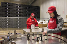 "<div class=""source"">KACIE GOODE/The Kentucky Standard</div><div class=""image-desc"">Megan Wooldridge, of Communicare, inspects bottles while Erica Goode boxes. A new bottling line at the Guthrie Opportunity Center is providing new and different jobs for participants. The line was established by ReBart Bottling Company, owned GO Center Foundation Board member Renea Bartoszek and husband Michael ""Bart"" Bartoszek.</div><div class=""buy-pic""><a href=""/photo_select/83390"">Buy this photo</a></div>"