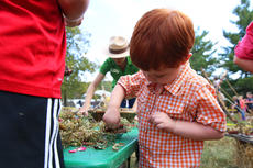 """<div class=""""source"""">KACIE GOODE/The Kentucky Standard</div><div class=""""image-desc"""">Jack Dulmage, 3, adds an artistic flare to his mudpie during an activity at Bernheim's ColorFest celebration.</div><div class=""""buy-pic""""><a href=""""/photo_select/80422"""">Buy this photo</a></div>"""