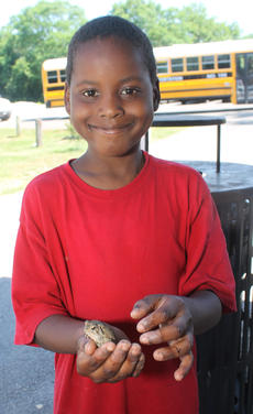 "<div class=""source""></div><div class=""image-desc"">This little boy caught a toad at Bloomfield Memorial Park.</div><div class=""buy-pic""><a href=""/photo_select/77005"">Buy this photo</a></div>"