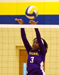 """<div class=""""source"""">Peter W. Zubaty</div><div class=""""image-desc"""">Caresha Allen is one of eight seniors hoping to help Bardstown to the region for the first time.</div><div class=""""buy-pic""""></div>"""