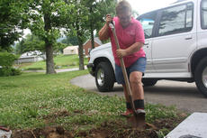"""<div class=""""source"""">JENNIFER GROTE/The Kentucky Standard</div><div class=""""image-desc"""">Ellen Demos, volunteer coordinator for Barktown Rescue, plants flowers in front of the organization's new facility Monday.</div><div class=""""buy-pic""""><a href=""""/photo_select/56742"""">Buy this photo</a></div>"""
