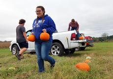 """<div class=""""source"""">KACIE GOODE/The Kentucky Standard</div><div class=""""image-desc"""">Students unload pumpkins for the pumpkin patch Wednesday afternoon as they prepare for the FFA Autumn Fest Oct. 14 and Oct. 21.</div><div class=""""buy-pic""""><a href=""""/photo_select/89988"""">Buy this photo</a></div>"""