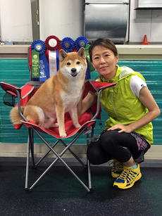 """<div class=""""source"""">SUBMITTED PHOTO</div><div class=""""image-desc"""">Junko Nagafuchi, of Bardstown, and her Shiba, Kurio, took first place in the medium dog class at an agility competition in Ohio.</div><div class=""""buy-pic""""><a href=""""/photo_select/87573"""">Buy this photo</a></div>"""