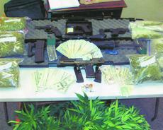 """<div class=""""source""""></div><div class=""""image-desc"""">Marijuana plants, cash and firearms were confiscated Friday at 118 Thundersprings Drive. Rudolph J. Terlemezian was arrested.</div><div class=""""buy-pic""""><a href=""""/photo_select/14389"""">Buy this photo</a></div>"""