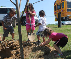 "<div class=""source"">RANDY PATRICK/The Kentucky Standard</div><div class=""image-desc"">Children use shovels and hands to fill in around the tulip poplar tree they helped plant at Bloomfield Memorial Park.</div><div class=""buy-pic""><a href=""/photo_select/77006"">Buy this photo</a></div>"