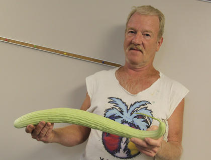Phillip Roby, Bardstown, grew this 25-inch Armenian cucumber in his home garden.