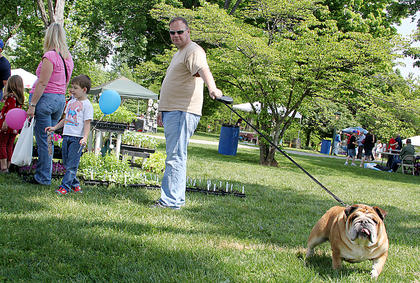 Bubba Wood, Bardstown, leads bulldog Howard around the Shades of Nature Herb Festival April 28.