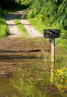 A mailbox stands amid floodwater blocking a driveway along Old Nelsonville Road in Boston Monday morning. The Rolling Fork River near Boston crested Monday morning at just over 42 feet, at the moderate flood stage, according to the National Weather Service.