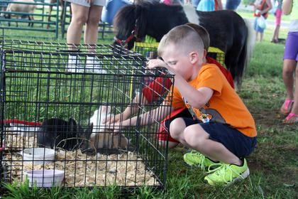 Devin Newsome, 5, and Kaiden Newton, 6, both of Bardstown, kneel to pet some rabbits on display at the Salt River Electric picnic Monday.