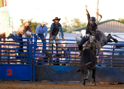Tommy Watson rides a bull during Tuesday's rodeo at the Nelson County Fair.