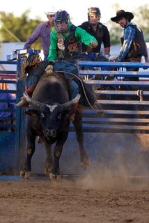 Pete Miller rides a bull Tuesday night at the Nelson County Fair.