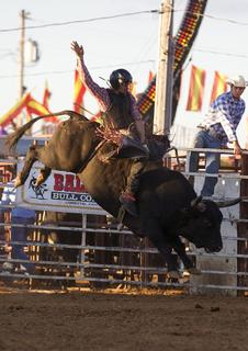 Daniel Tisman attempts to stay atop a bucking bull for eight seconds Tuesday night at the Nelson County Fair's rodeo.