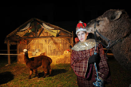 William Hahn leads a camel owned by Magistrate Jerry Hahn at the living Nativity at Bardstown Baptist Church Friday. Members of the church and others handled donkeys, sheep, camels and alpacas at the Nativity scene.