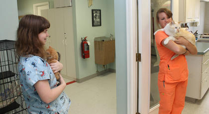 Esther Massingill plays with kittens at the Nelson County Animal Shelter.