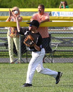 Nelson County's 10-year-old Little League All-Stars were state runners-up, the first local team to advance that far since 1983.