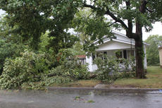 """<div class=""""source"""">RANDY PATRICK/The Kentucky Standard</div><div class=""""image-desc"""">This tree that in front of a house on Barber Avenue was one of many in the city that came down during the storm Tuedsay.</div><div class=""""buy-pic""""></div>"""