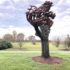 "<div class=""source"">Photo courtesy of Bernheim Forest</div><div class=""image-desc"">Anthony Heinz May was an Artist in Residence at Bernheim in August and September of 2018 and created site-inspired artworks using natural waste and trees found in Bernheim's landscape.</div><div class=""buy-pic""></div>"