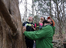 """<div class=""""source"""">KACIE GOODE/The Kentucky Standard</div><div class=""""image-desc"""">Zachary Keaney and PeggyAnn Lynch gaze up a tree with guide Dan Pascucci Monday as Bernheim hosts its first daily walk for its Spring Break Adventure activities.</div><div class=""""buy-pic""""><a href=""""/photo_select/84602"""">Buy this photo</a></div>"""