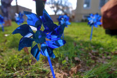 """<div class=""""source"""">KACIE GOODE/The Kentucky Standard</div><div class=""""image-desc"""">Blue pinwheels serve to remind the community of the thousands of children across the United States impacted by child abuse and neglect.</div><div class=""""buy-pic""""><a href=""""/photo_select/101394"""">Buy this photo</a></div>"""