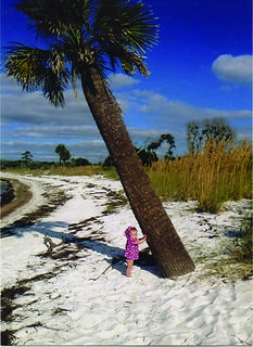 Stella Kelty, 7 months old, holding up a tree on vacation in Florida. Submitted by Pappa and Mamma Janes.