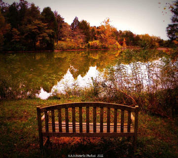 Images of Bernheim in October.