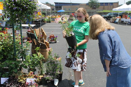 April Bell and her daughter, Olivia Bell, look at Asiatic daylilies for sale at the Blooming Bardstown Marketplace.