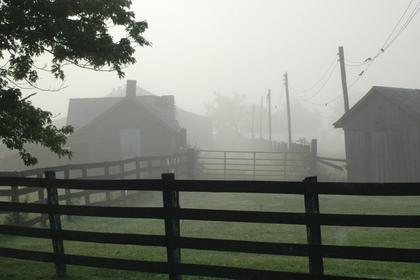 Ken Gray, Georgetown, received runner-up honors in the contest. He captured a foggy morning in the middle of summer in August 2009. The photo was taken at his mother-in-law's home on Old Bloomfield Road.