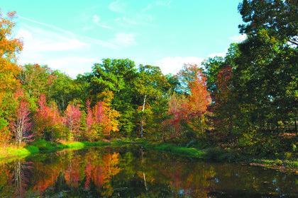 "Stephanie C. Simpson, Boston, received runner-up honors for her photo of a pond and scenery adjoining her property owned by her husband's grandmother. The photo was taken this fall. She named her photo ""A Perfect Day."""