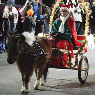 Virginia Thompson rides a cart led by her tiny horse.