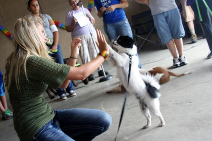 Ashley Holt Dudgeon gets a high five from her dog, Bandit, after he was crowned Most Unique Dog at the Bloomfield Barkfest Saturday.