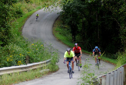 Bicyclists tread the hilly terrain on Pottershop Road during the Old Kentucky Home Bicycle Tour Saturday.