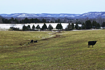 Snow still covered parts of this pastureland on Sunday, as well as the knobs looking south from Petersburg Road in Boston. Most of the snow has melted away by now, but with rain in the forecast all this week, the potential for flooding looms along the Rolling Fork River.