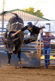 "Tommy ""Barefoot"" Watson of Bloomfield prepares is thrown from the bull he is riding, King Arthur, during the rodeo at the Nelson County Fair Thuesday night. Watson earned his nick name after he lost a boot riding a bull in a previous rodeo."