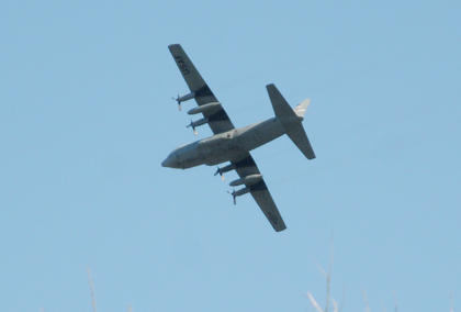 A C130 airplane flies over Bloomfield during ceremonies at Bloomfield Memorial Park on Veterans Day.