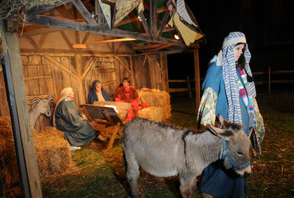 Sarah Hahn leads a small donkey at the living Nativity at Bardstown Baptist Church Friday. The donkey remained still for two about hours.