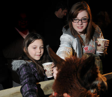 Madison Wheatley and Chloe Edwards pet an alpaca while enjoying a cup of hot chocolate at the living Nativity at Bardstown Baptist Church Friday.