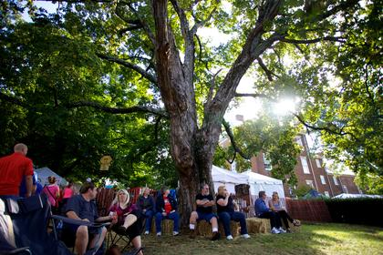 Festival goers take a break under a tree Saturday on the lawn of Spalding Hall during the 2013 Kentucky Bourbon Festival.